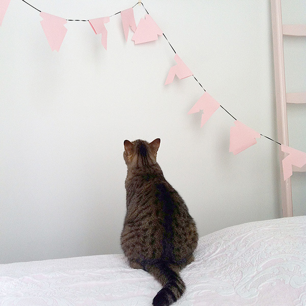 BLij Flags template with cat